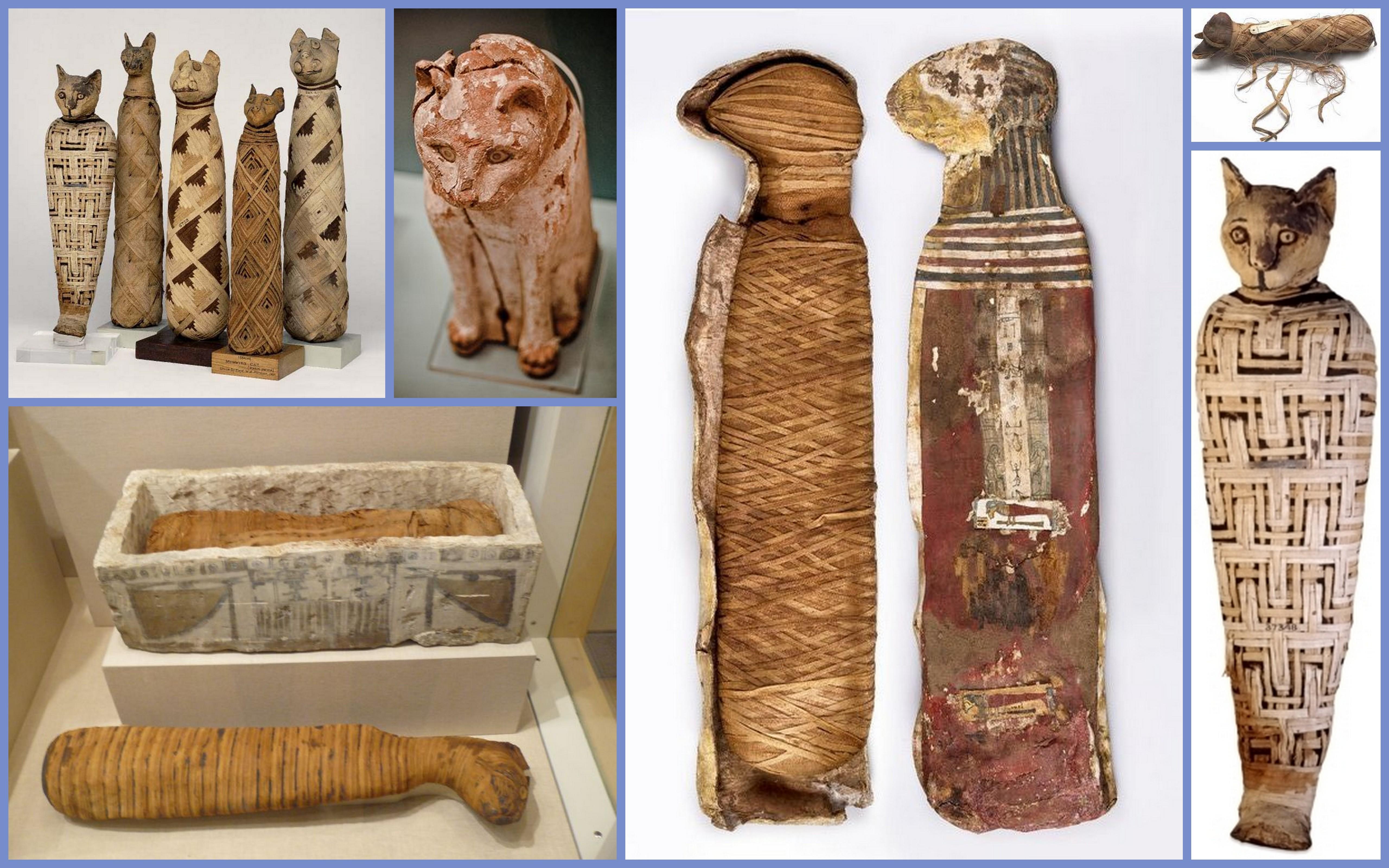 Potęga Imperium Brytyjskiego wyrosła na … mumiach, czyli biedny los kotów w starożytnym Egipcie